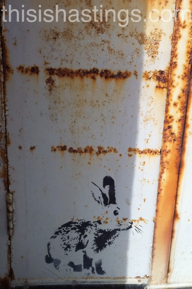 Hidden Hastings - Stewy Rabbit